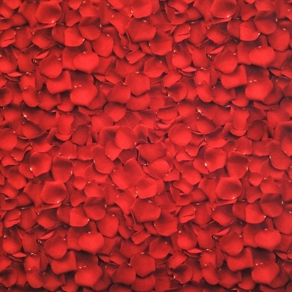 Red rose petal fabric printed on Carvico VITA recycled fiber print base.