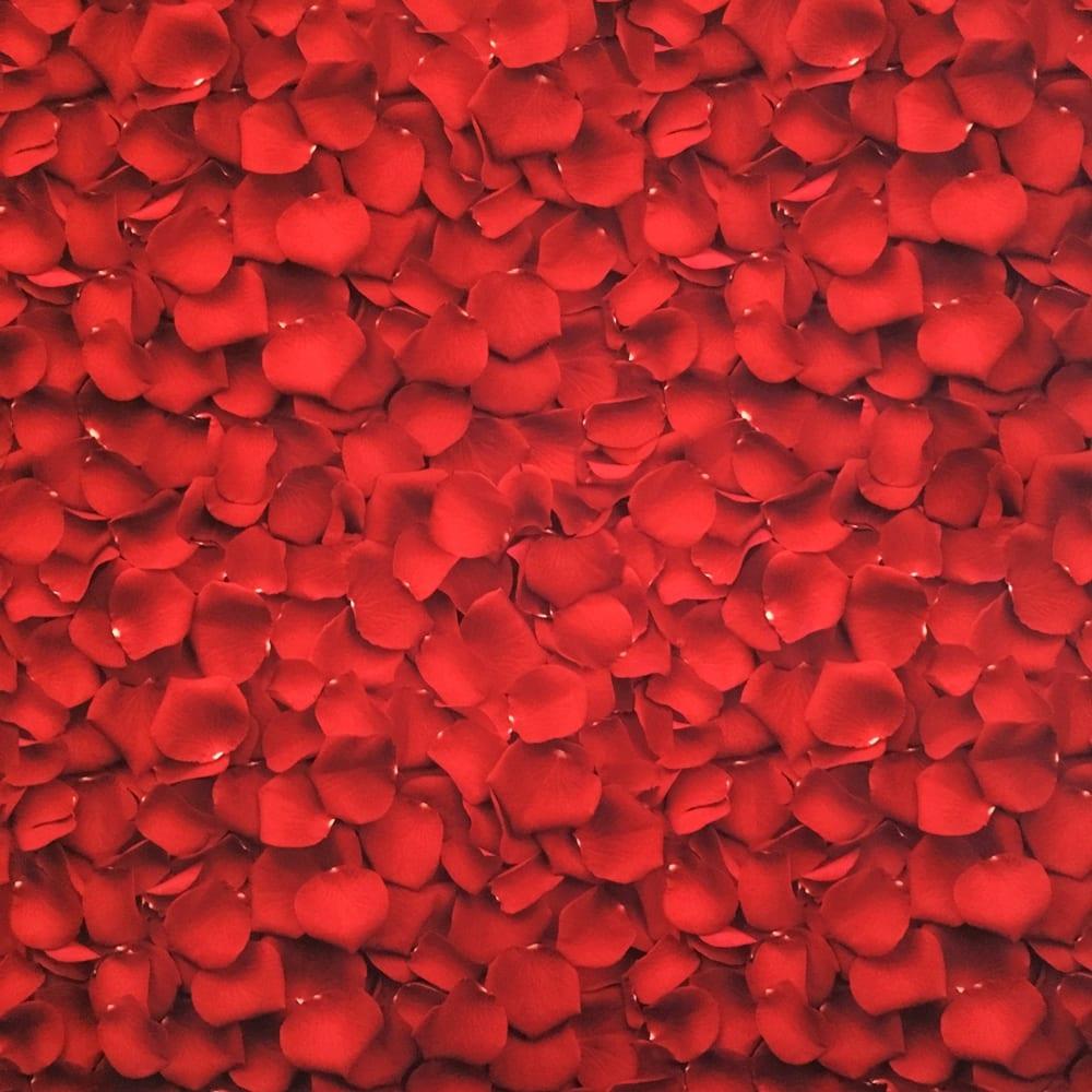 Rose Petals – Red